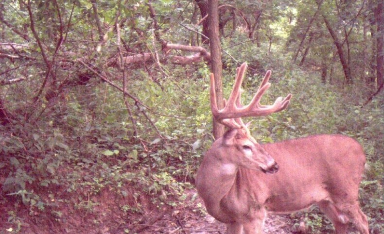 Disney World of Hunting Camps in Southwestern Wisconsin