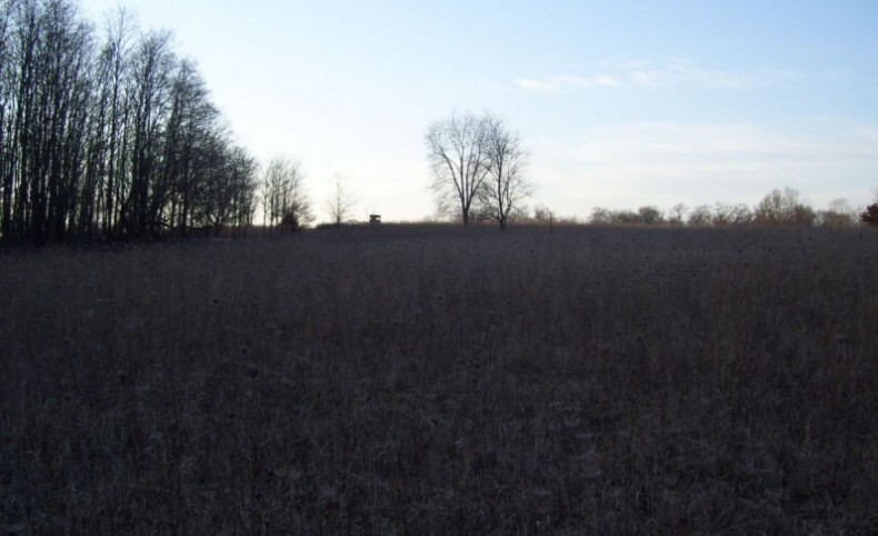 Trophy Whitetail Hunting in Columbia County WI 120 Acres