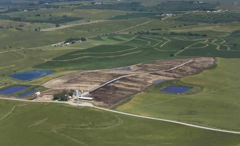 87.71 acre Feedlot