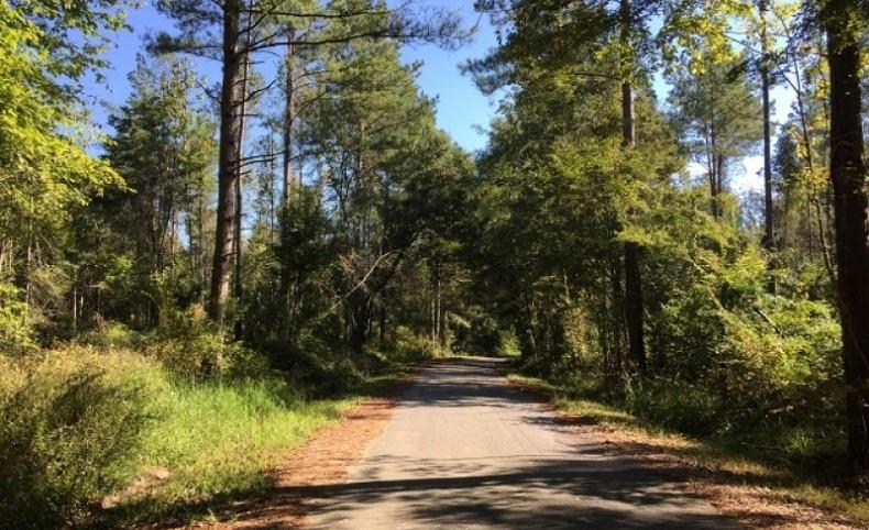 Wyatt Ellis Road - Leaf River