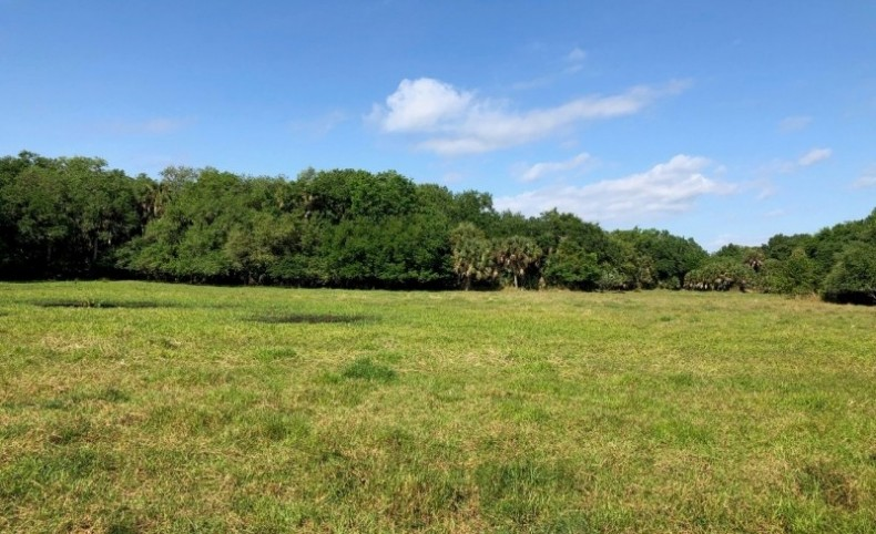 850+/- Beautiful Acres on the Glades/ Highlands County Line