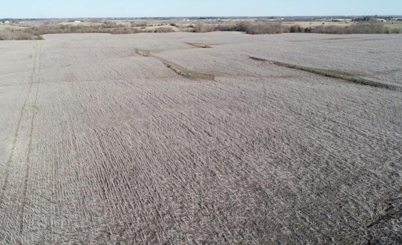 Kanzemeier 235 Farm