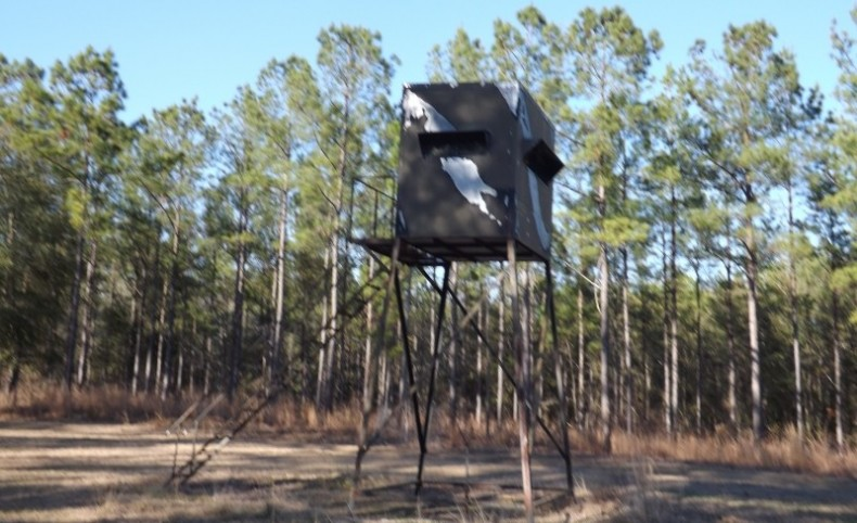 Recreational, Timber and Hunting Land