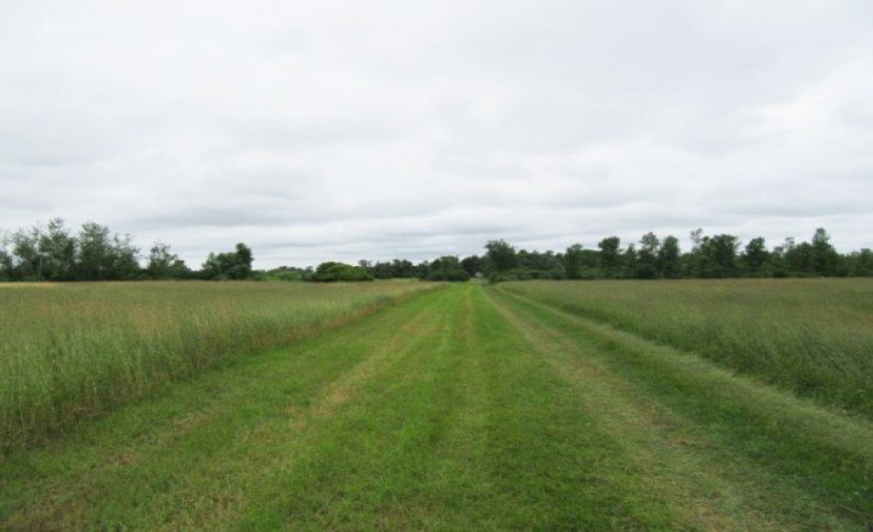 Tillable Farmland Hay Business in NY