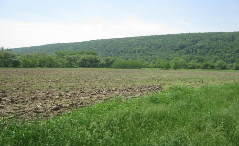 205 acres Farmland Timberland Moravia NY Route 38