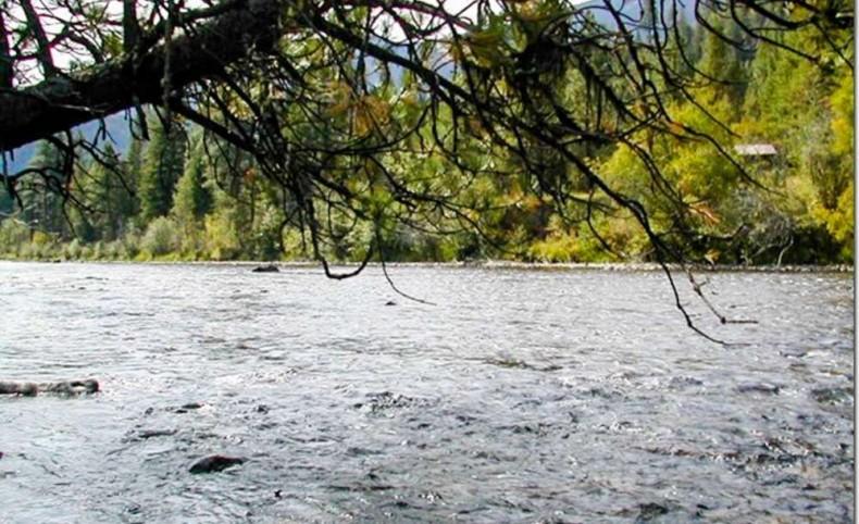 Own a Piece of Rock Creek Blue Ribbon Trout Stream