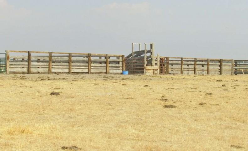 Rainbow Ranch
