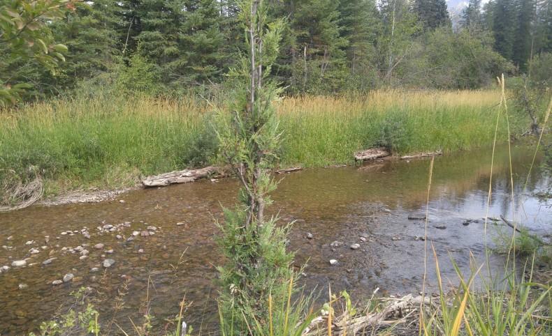 Swan River Small Acreage
