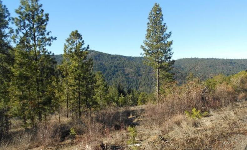 Idaho Road Valley View (15)