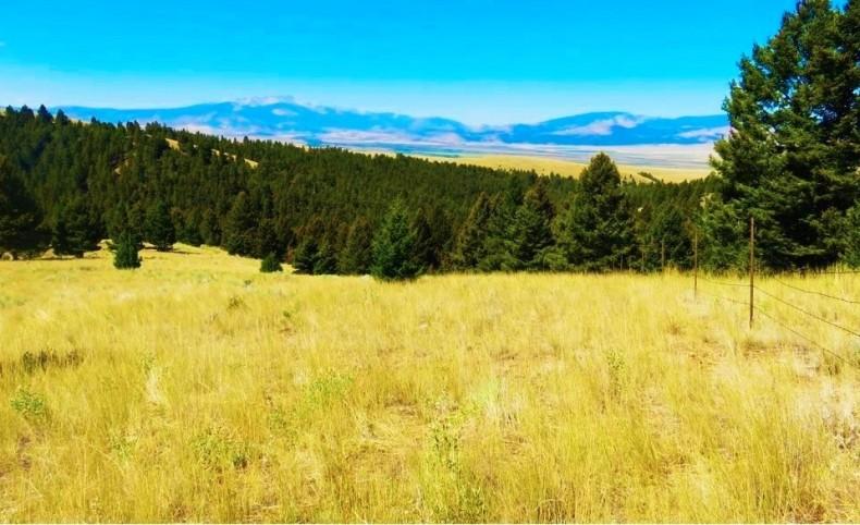 Perkins Creek Ranch