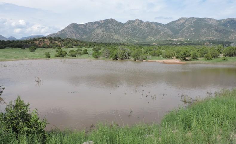 Felch Creek Ranch