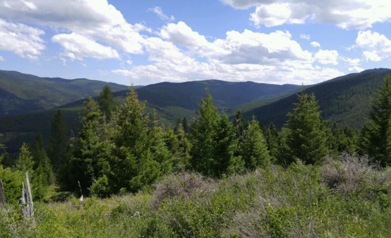 High Ridge Trail Acreage