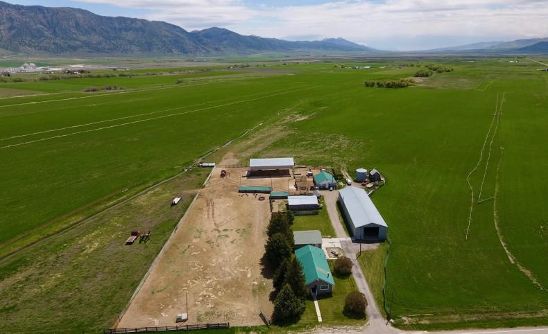 Jones Farm