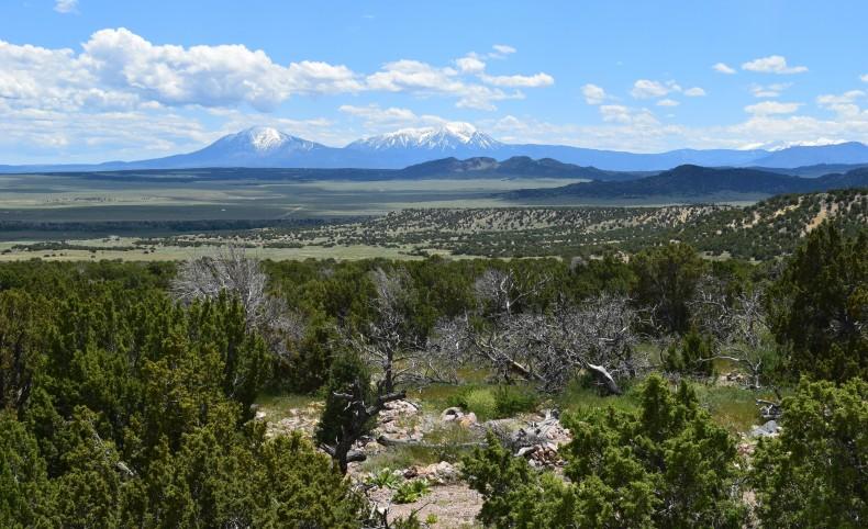 Condor Ranch