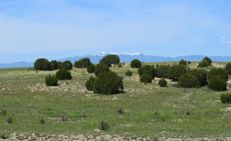 Hatchet Ranch Land Holding
