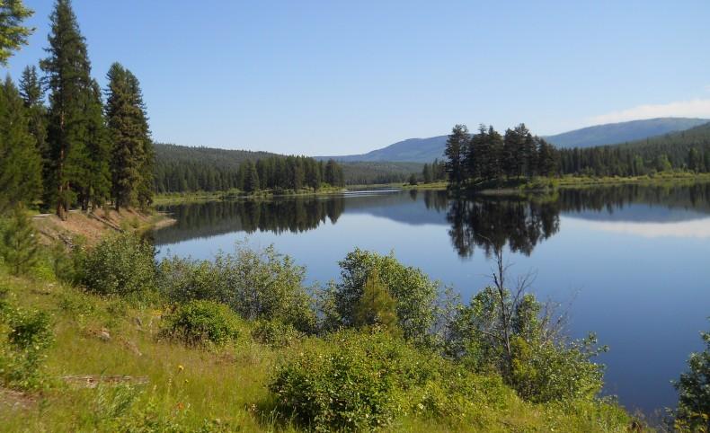 Island Lake Escape