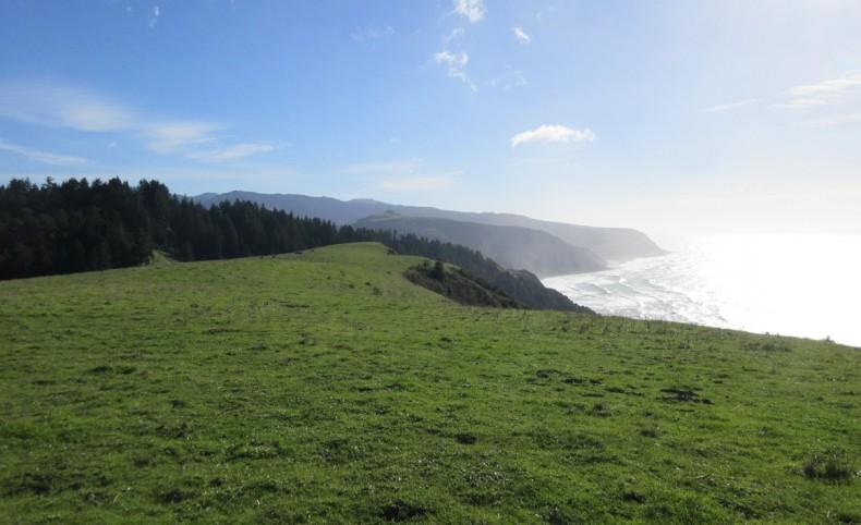 Lost Coast Oceanfront Ranch