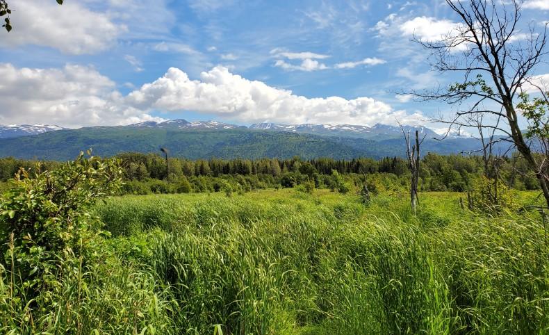 Fox River Wilderness