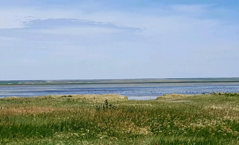 Lake Mason 320 Acres