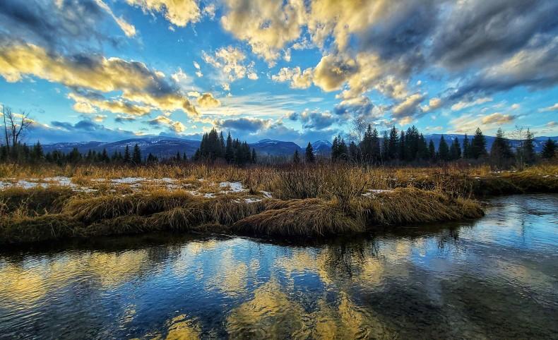 Swan River Retreat