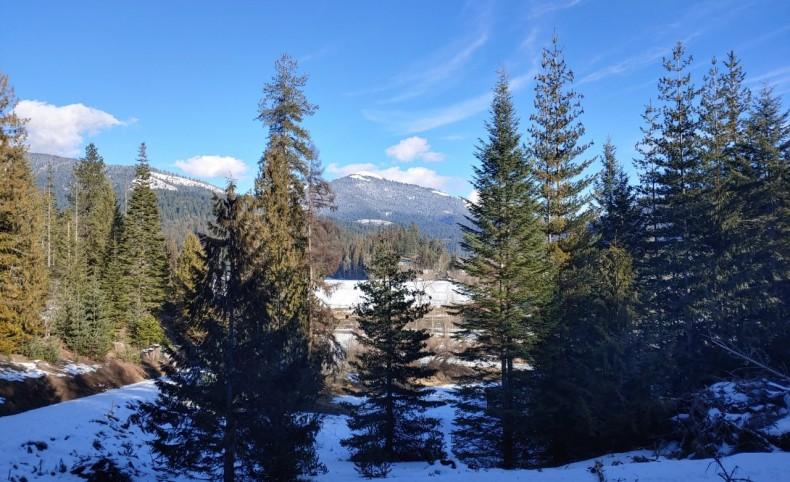 Jacot Creek Ranch Tract 1
