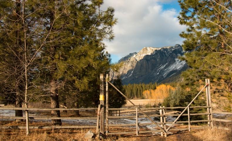 Where the Elk roam Ranch