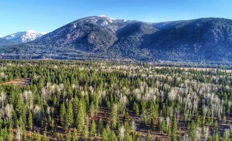 Meandering Elk Creek Sanctuary