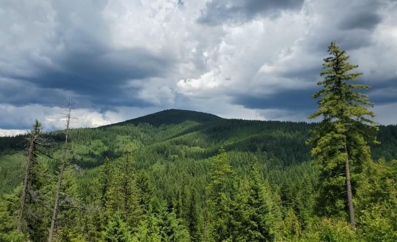Mountaintop Retreat - Tract 4 - 20.4 acres