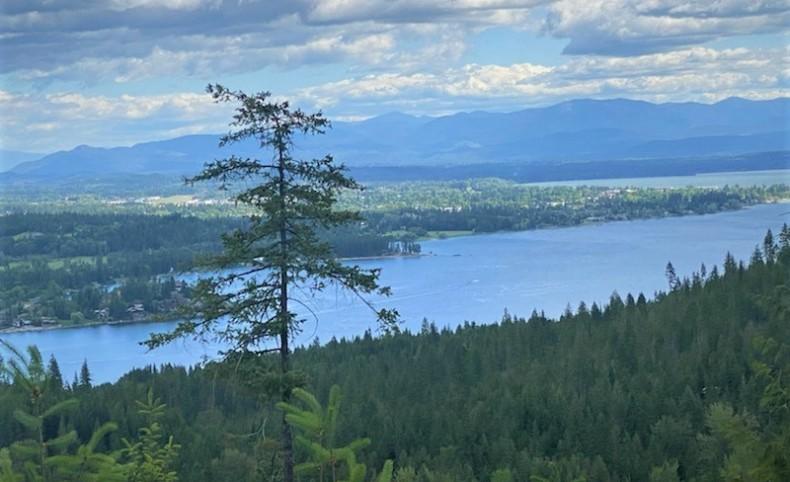 """NKA """"Scenic View"""""""