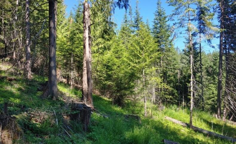 Jacot Creek Ranch Tract 2