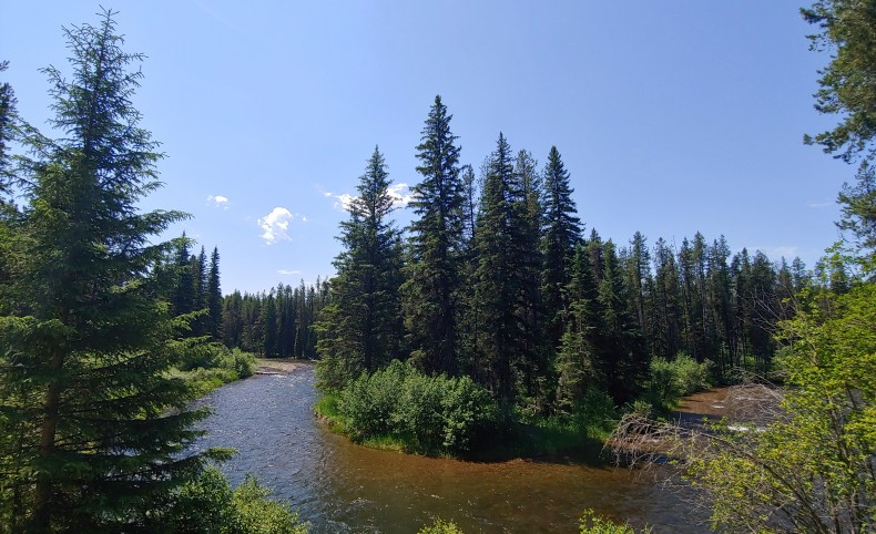 Spectacular Swan River